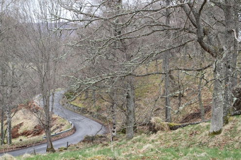 Winding roads along the transect