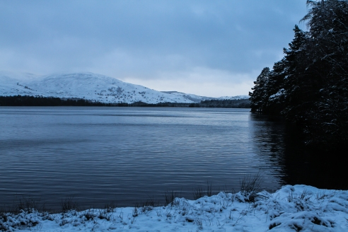 Snowy views by the loch